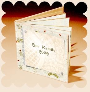folder-copy