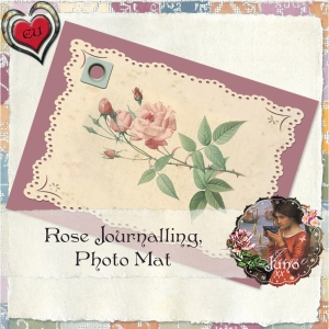 http://junosplace.wordpress.com/2009/04/22/cu-rose-journalling-mat/