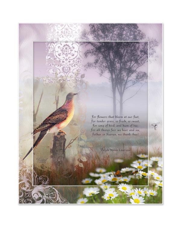 juno Song of Bird, 8x10  frame copy72