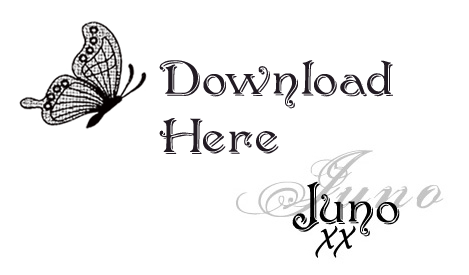 Download Juno xx copy