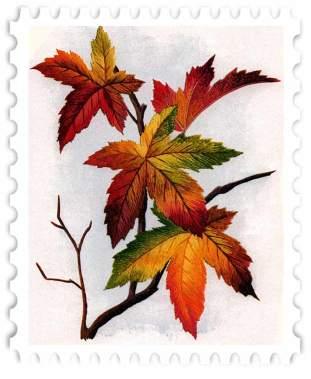 juno-Leaves-Stamp