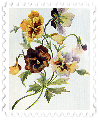 juno-Pansies-Stamp