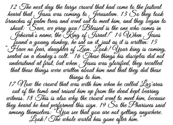 John 12,12-19 b
