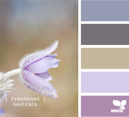 _Inspiration Design Seeds Freshened Neutrals 1