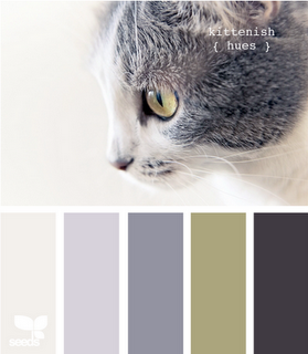 _Inspiration Design Seeds Kittenish Hues
