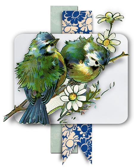 juno-Pellucid-Birds-J.-Mat