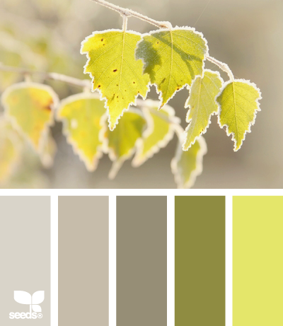 _Inspiration Design Seeds Frosted Hues_1