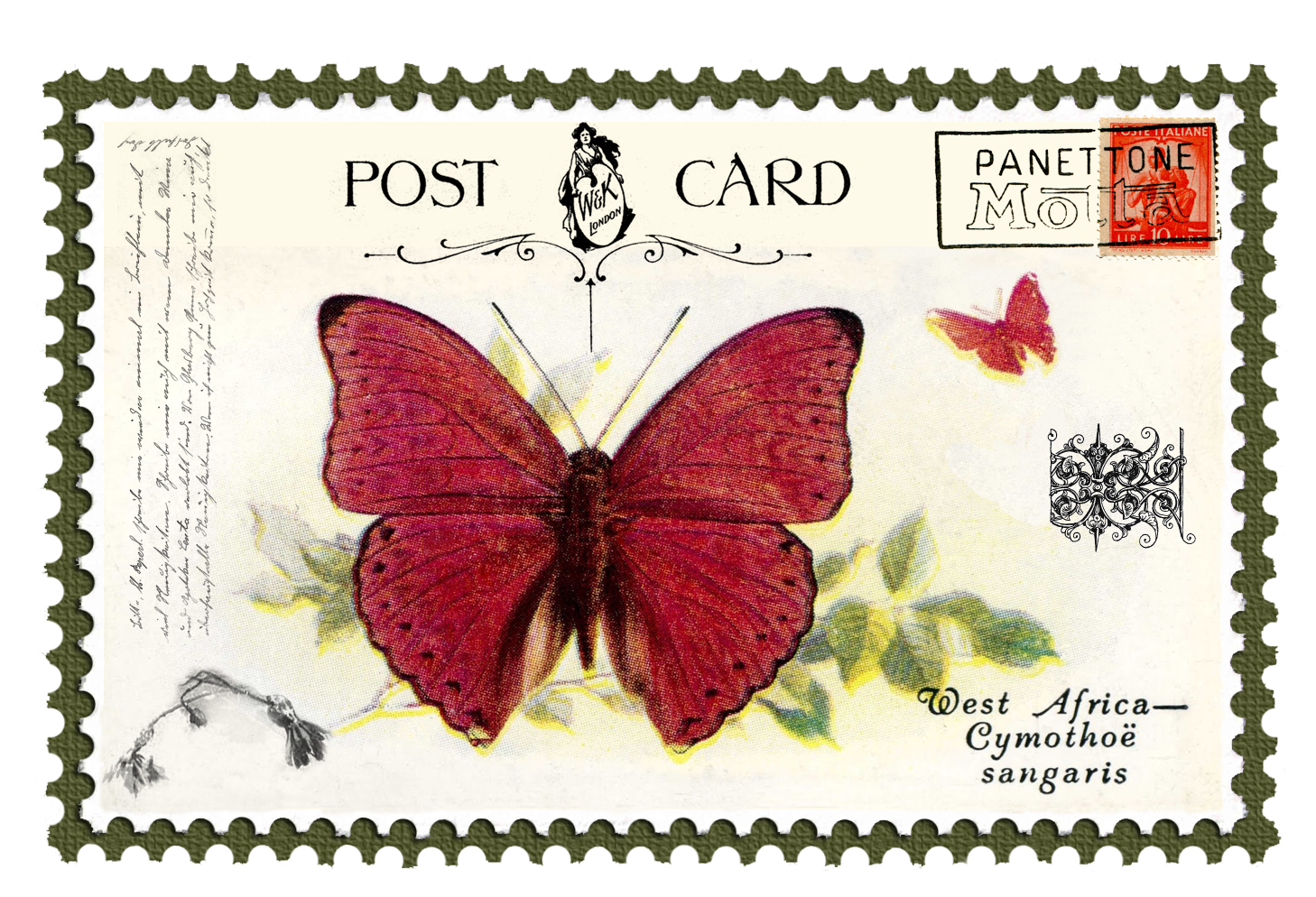 Juno Vintage Butterfly Postage Stamp 5 Mat