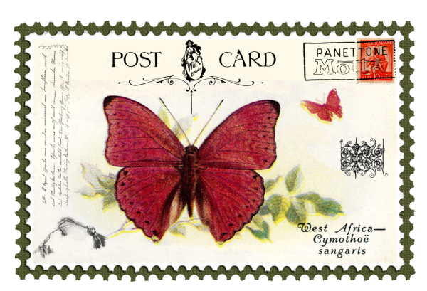 juno Vintage Butterfly Postage Stamp 5 Mat