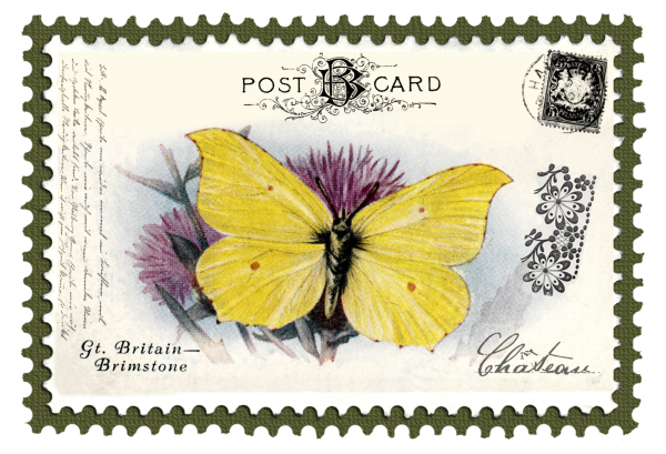 juno Vintage Butterfly Postage Stamp 7 Mat