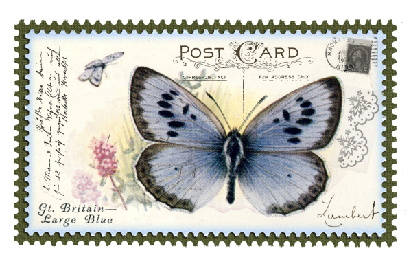juno Vintage Butterfly Postage Stamp 1 Mat