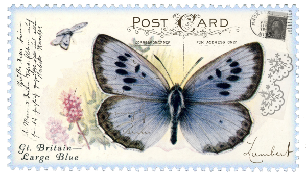 juno Vintage Butterfly Postage Stamp 1