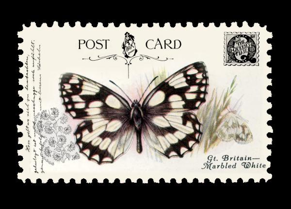 juno Vintage Butterfly Postage Stamp 10