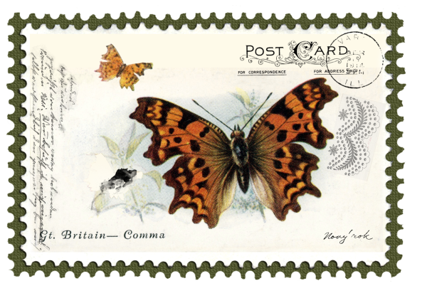 juno Vintage Butterfly Postage Stamp 2 Mat