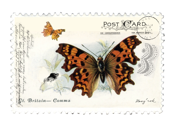 juno Vintage Butterfly Postage Stamp 2