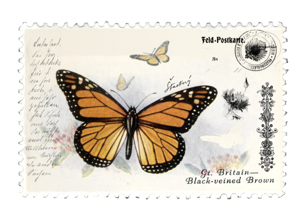 juno Vintage Butterfly Postage Stamp 4