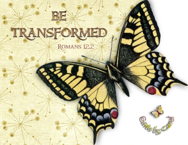 _ccrl Be Transformed