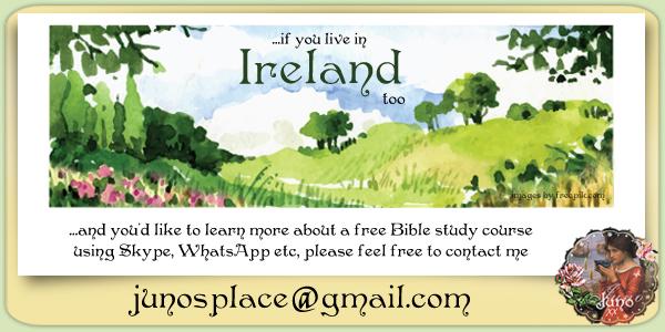juno Banner for Irish Visitors copy.jpg